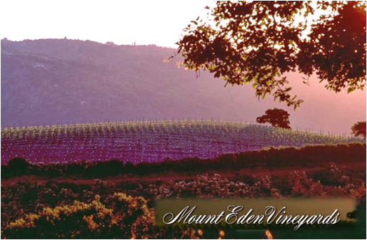 Mount Eden Vineyard